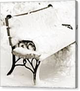 Take A Seat  And Chill Out - Park Bench - Winter - Snow Storm Bw Canvas Print