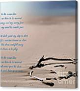 Take Me To The Ocean Blue Canvas Print