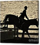 Taking The Fence Canvas Print
