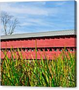 Tall Grass And Sachs Covered Bridge Canvas Print