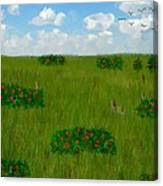 Tall Grass Prairie National Reserve Canvas Print