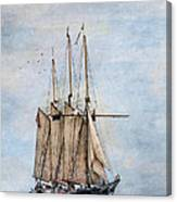 Tall Ship Denis Sullivan Canvas Print