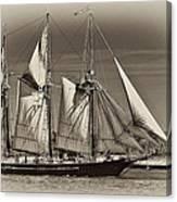 Tall Ship II Canvas Print