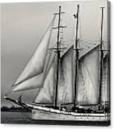 Tall Ships Sailing Boat Canvas Print