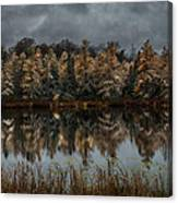 Tamarack Reflections Canvas Print