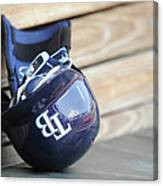 Tampa Bay Rays V Baltimore Orioles - Canvas Print