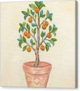 Tangerine Tree Canvas Print