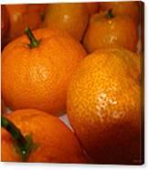 Tangerines 01 Canvas Print