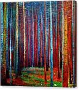 Tannenwald Canvas Print