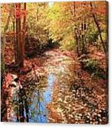 Tanners Brook Canvas Print