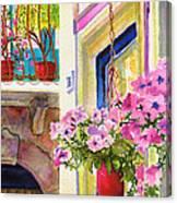 Taormina- Hanging Petunias Canvas Print