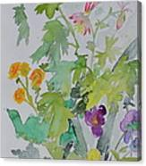 Taos Spring Canvas Print