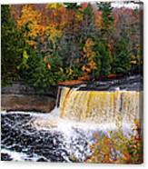 Taquamenon Falls IIi Canvas Print