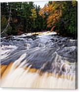 Taquamenon River Canvas Print
