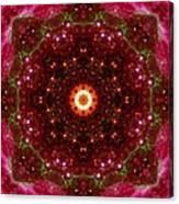 Tarantula Nebula II Canvas Print