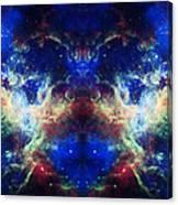 Tarantula Reflection 1 Canvas Print