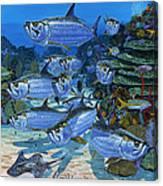 Tarpon Alley In0019 Canvas Print