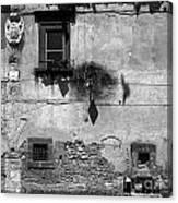 Tarquinia Muro Con Stemma Canvas Print
