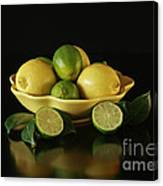 Tart And Tasty With Lemon And Lime Canvas Print