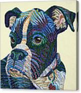 Tater - Portrait Of A Boxer Canvas Print
