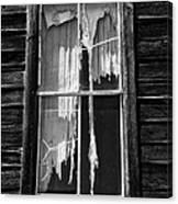 Tattered And Torn Canvas Print