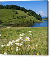 Tau Mare Lake Canvas Print