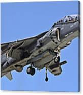 Tav 8b Harrier Jump Jet Canvas Print