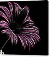 Tea And A Flower Canvas Print