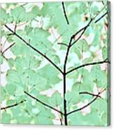 Teal Greens Leaves Melody Canvas Print