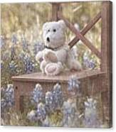 Teddy Bear And Texas Bluebonnets Canvas Print