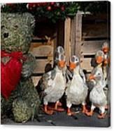Teddy Bear With Flock Of Stuffed Ducks Canvas Print