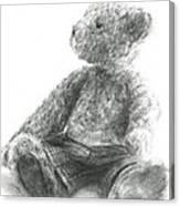 Teddy Study Canvas Print