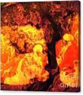 Teit Canvas Print