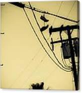 Telephone Pole 8 Canvas Print