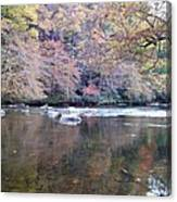 Tellico River In Fall Canvas Print