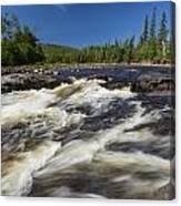 Temperance River 4 Canvas Print