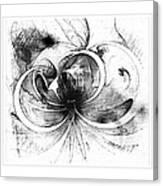 Tendrils In Pencil 01 Canvas Print