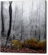 Tennessee Mountain Frost Canvas Print