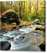 Tennessee Stream In Fall Canvas Print