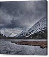 Tern Lake Canvas Print