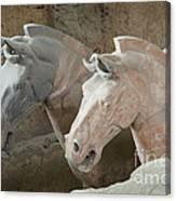 Terracotta Warrior Horses, China Canvas Print
