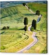 Terrapille Farm Canvas Print