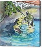 Terrific Turtle Canvas Print