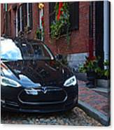Tesla On Acorn Canvas Print