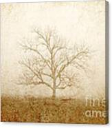 Test Of Time Canvas Print