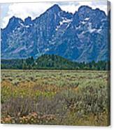 Teton Peaks And Flatland Near Jenny Lake In Grand Teton National Park-wyoming Canvas Print