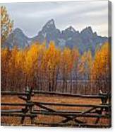 1m9354-teton Range In Autumn From Jackson Hole Ranch Country Canvas Print