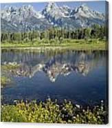 4m9310-teton Range Reflection, Blacktail Pond, Wy Canvas Print