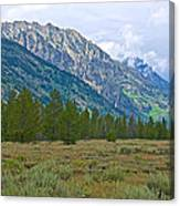 Tetons Above The Meadow In Grand Teton National Park-wyoming Canvas Print