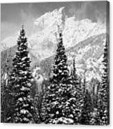 Tetons In Snow Canvas Print